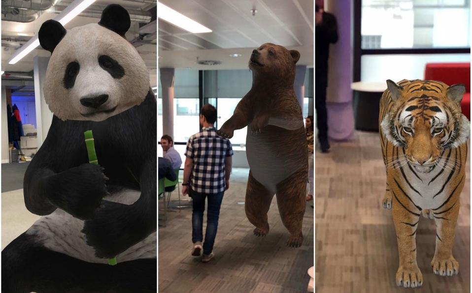 oso panda oso pardo tigre animales virtuales